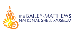 Bailey-Matthew National Shell Museum