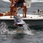 Tarpon Fishing on Sanibel Island