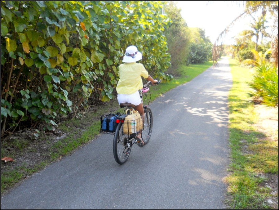 sanibel-island-hotels-island-inn-bicycling (7)