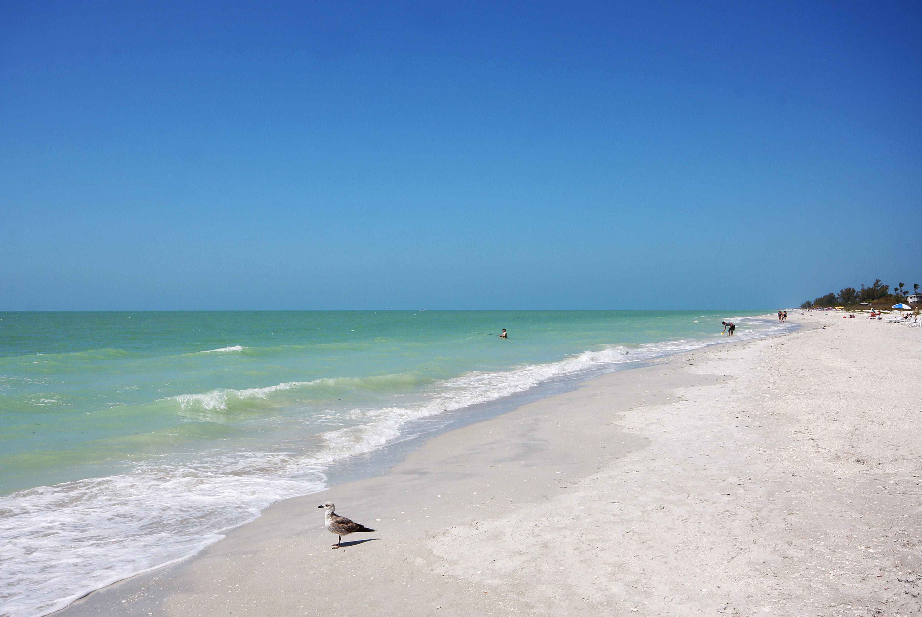 Sanibel Island Beaches: The Best Place To Stay On Sanibel Island