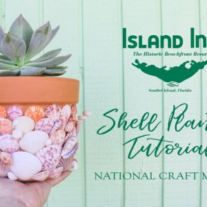 Sanibel Shell Planter Tutorial Cover Photo