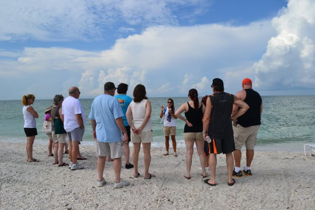 beach walks at the Island Inn with the Bailey-Matthews National Shell Museum